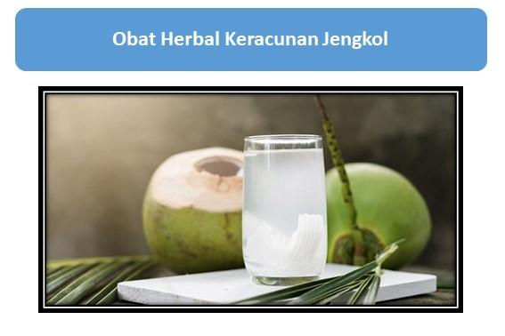 Obat Herbal Keracunan Jengkol